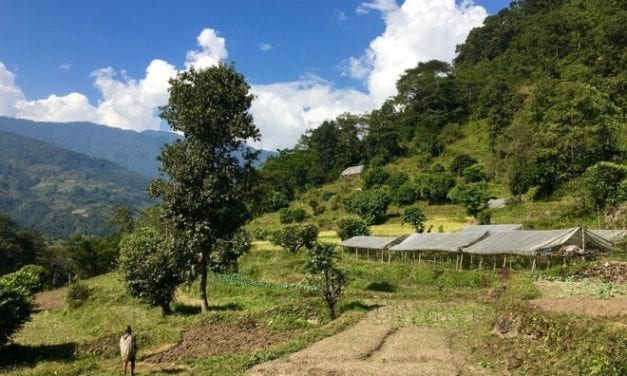 Saathi Bio Farm: Community Organic Market and Educational Centre in Nepal